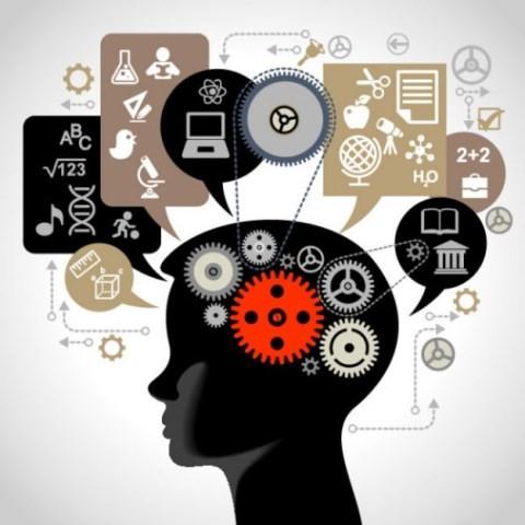 Cérebro aprendendo