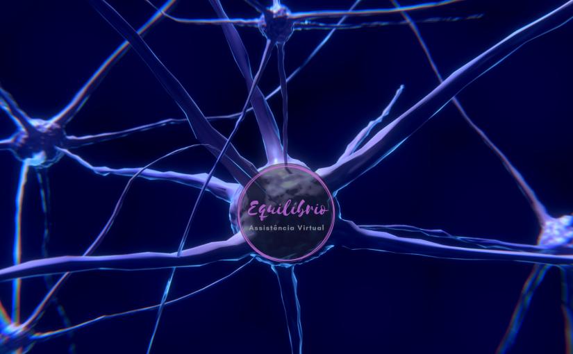 Educação e equilíbrio emocional segundo a neurociência(Transcrição)